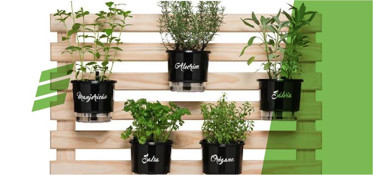 Como ter hortas dentro de casa ?